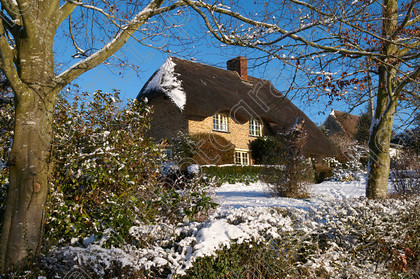 Red Oak Cottage 