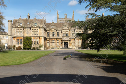 Corsham Court 0046 