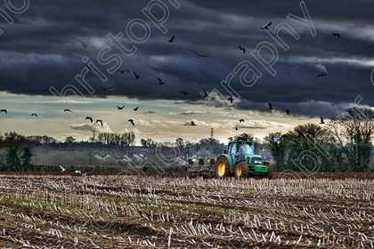 Ploughing 009 