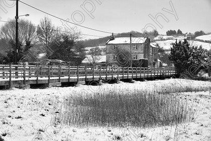 Reybridge 008bw 