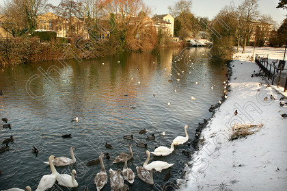 Chippenham town Bridge in snow 